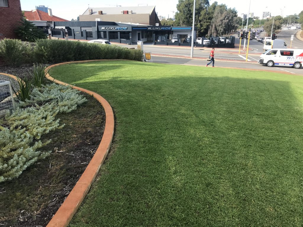 large lawn area with native garden beds by Landscapes For Life